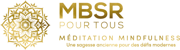logo-mbsr-footer