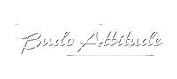 logo-budo-attitude